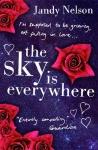 the sky is e